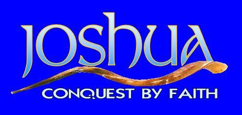 The Book of Joshua: Joshua 14:7, 8